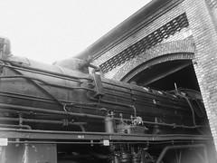 Berliner Eisenbahnfest sw 95
