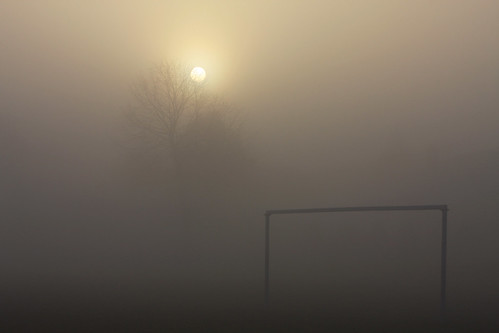 park morning sun mist tree fall fog sunrise canon early haze soccerfield