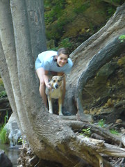 Mossprae Falls 056
