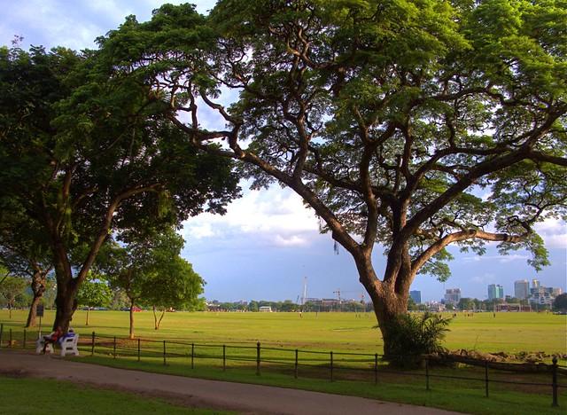 Queen's Park Savannah (HDR) | High Dynamic Range image of ...