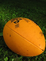 ball(0.0), plant(0.0), produce(0.0), ball(0.0), melon(0.0), orange(1.0), grass(1.0), yellow(1.0), sports equipment(1.0), football(1.0),