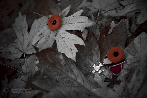 November time for remembrance