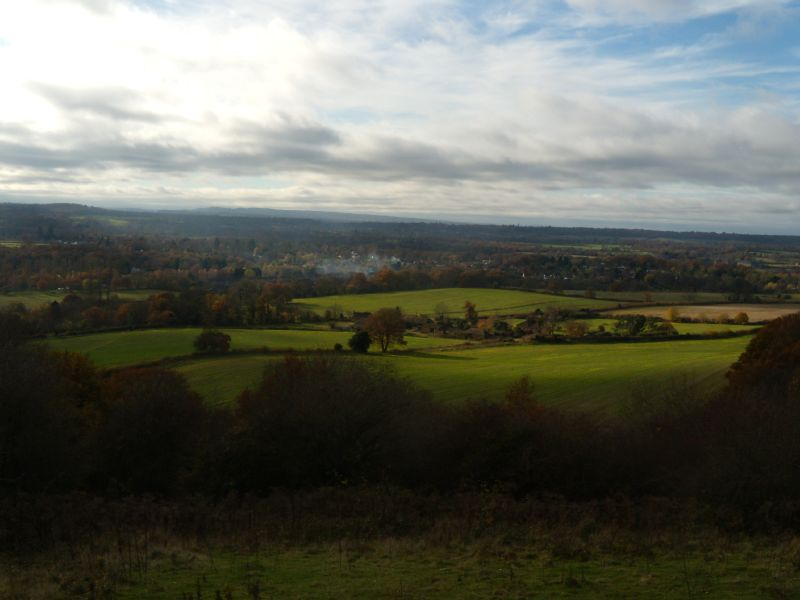 View from up top Guildford Circular via Chantries Hill