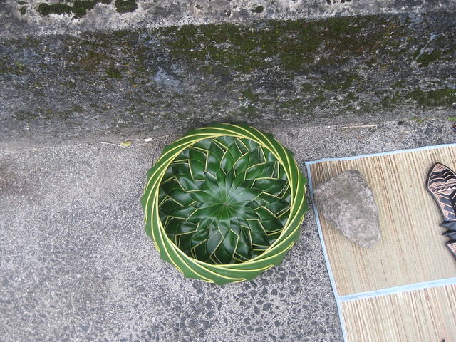How To Weave Palm Fronds Into A Basket : Flickriver japonica s most interesting photos