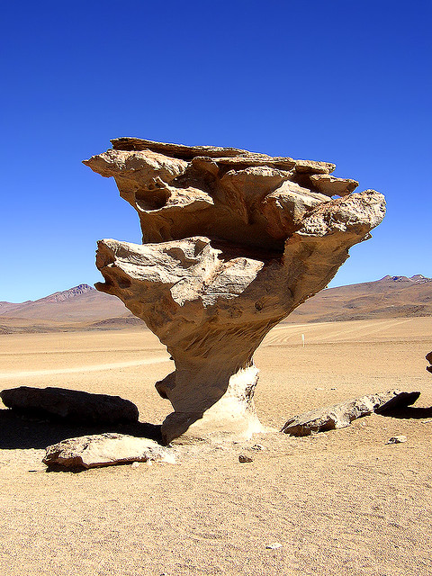 Rock Tree, Bolivia