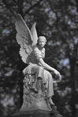 angel(1.0), art(1.0), temple(1.0), sculpture(1.0), monochrome photography(1.0), monument(1.0), fictional character(1.0), monochrome(1.0), black-and-white(1.0), statue(1.0),