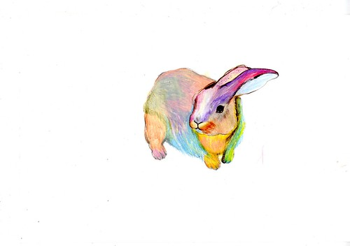 Rainbow R abbit