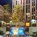 Merry Christmas by Tony Shi Photos