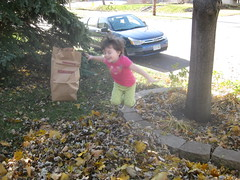 Raking Leaves with Lexi