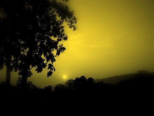 morning sun nature beautiful beauty misty sunrise for us scenery lovely rise assam sivasagar dutta rituparno ilovemyphoto