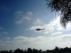 fire fighting helicopters flying over anna & chips' …