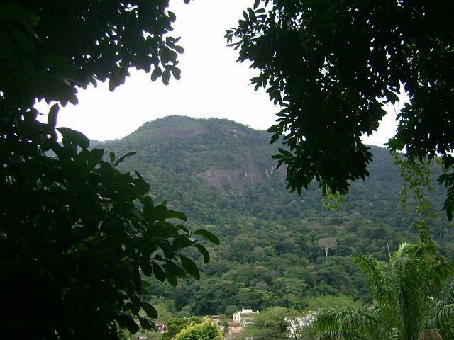jardin botanique for t de tijuca flickr photo sharing