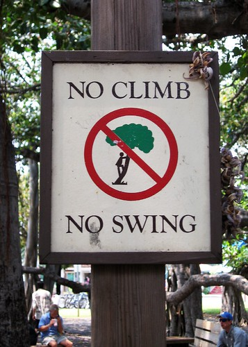 No Climb No Swing by kayt_n_eric