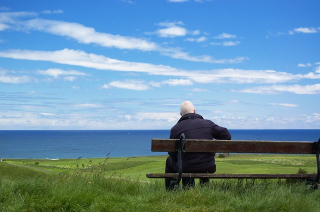 Watching the world go by @ Berwick Upon Tweed, Northumberland