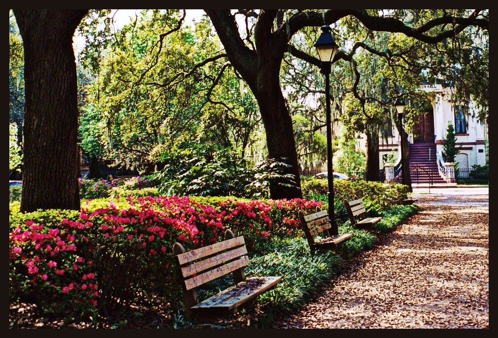 Forsyth Park - Savannah, Georgia