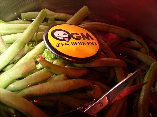 Les OGM, source d'inquiétude