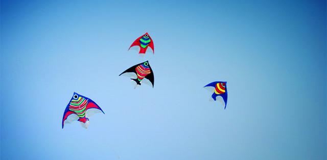 幼儿园手工鱼风筝图片