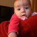 Small photo of Adaline