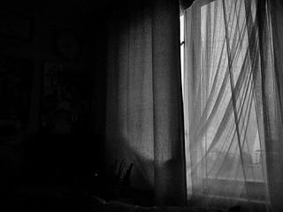 (132/365) Window
