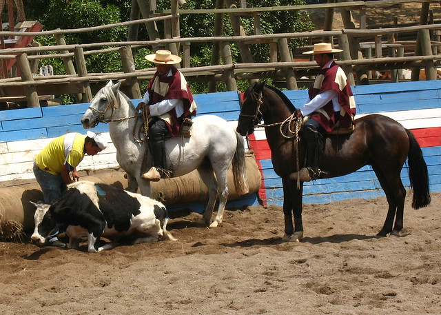 Chilean Rodeo | Flickr - Photo Sharing!