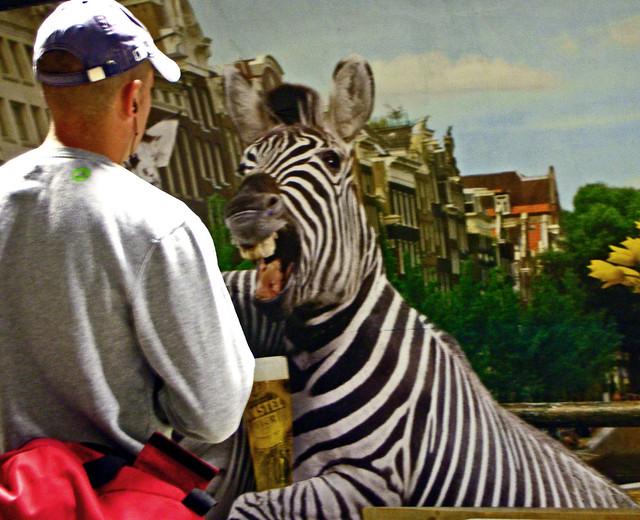 Serving the Zebra, Nikon COOLPIX S7c