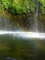 Mossprae Falls 077