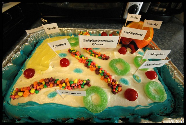 3D Plant Cell model Cake http://www.flickr.com/photos/aadavesway/2949338749/