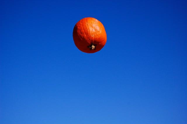 flying pumpkin picture taken by jen by