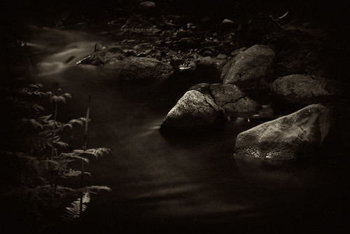 The Stream by .Nigel.