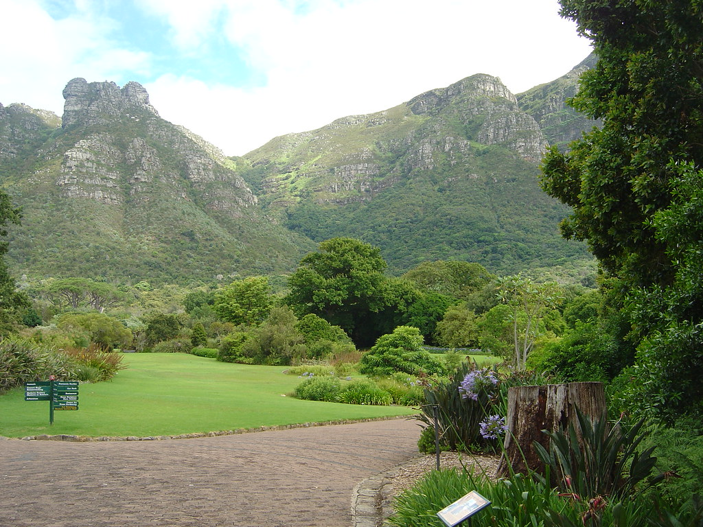 Kirstenbosch Botanical Gardens, Cape Town, South Africa (11)