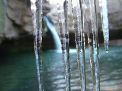 winter, water, sunlight, nature, ice, macro photography, moisture, reflection, close-up, icicle, freezing,