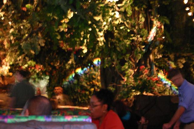 Rainforest Cafe Gurnee Mills Menu With Prices