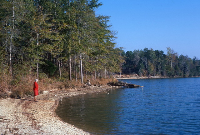 Camden (AL) United States  city pictures gallery : Roland Cooper State Park, near Camden, AL 1978 | Flickr Photo ...