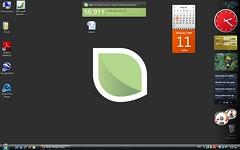 Sony Vaio Vista desktop with sidebar