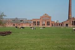 Fabriek