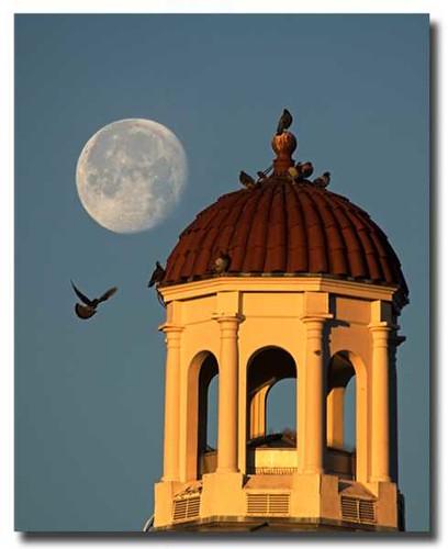 moon sunrise university valdosta state vsu blueribbonwinner platinumphoto