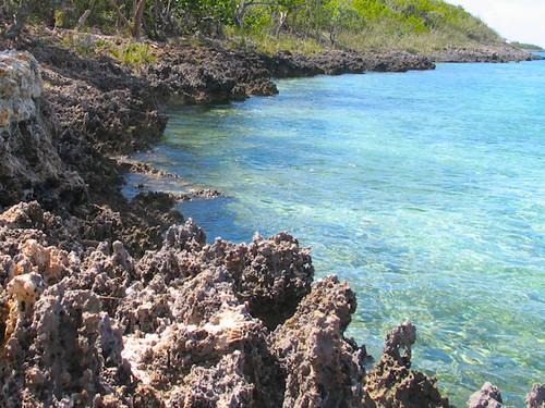 Rocky Beach Front of the Abaco Islands, Bahamas