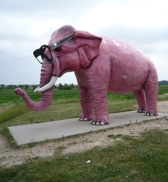 The Elephant Keeps Walking While The Dog Keeps Barking