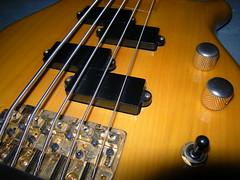 2732756852 44ded4310d m Different Options Available for Bass Guitar Lessons