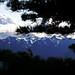 Hurricane Ridge 08-31-2008