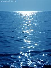 Shiny Velvet Sea Water
