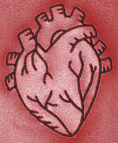 heart bib detail