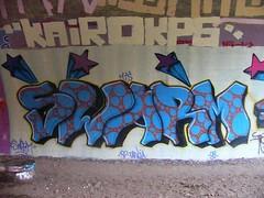 Swarm 2008