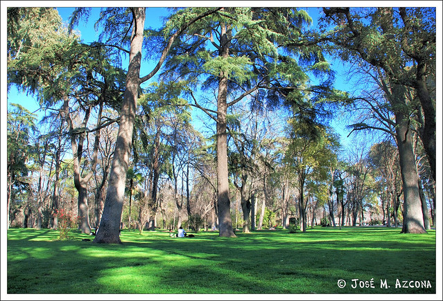 Madrid. Parque del Retiro.