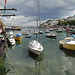 Brixham Harbour Panorama