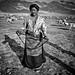 Tibetan nomadic herder by falsalama