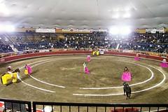 Bull Fight, Puebla Mexico