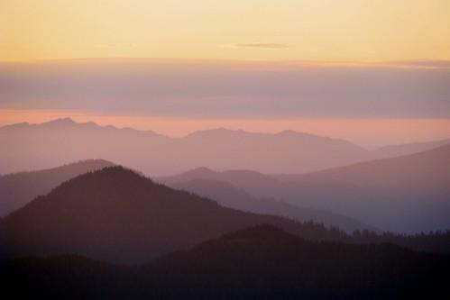 sunset color oregon forest mt national hood