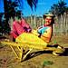 Homemade wheelbarrow by Nick Hobgood - Amphibious photographer