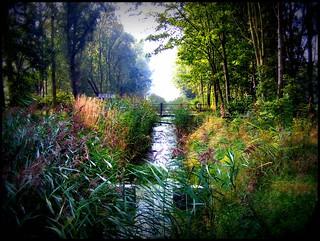 the smel of autumn make explore
